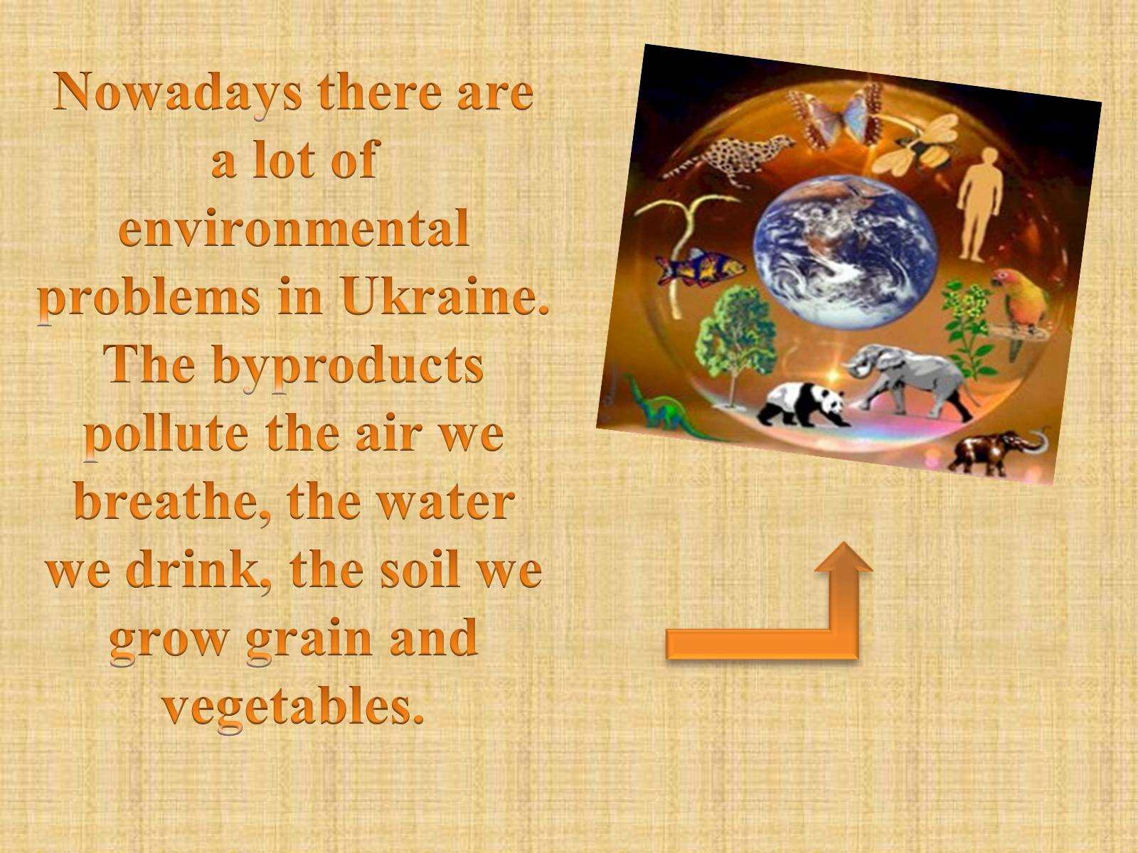 Environmental situation in ukraine essay essays on why the drinking age should not be lowered