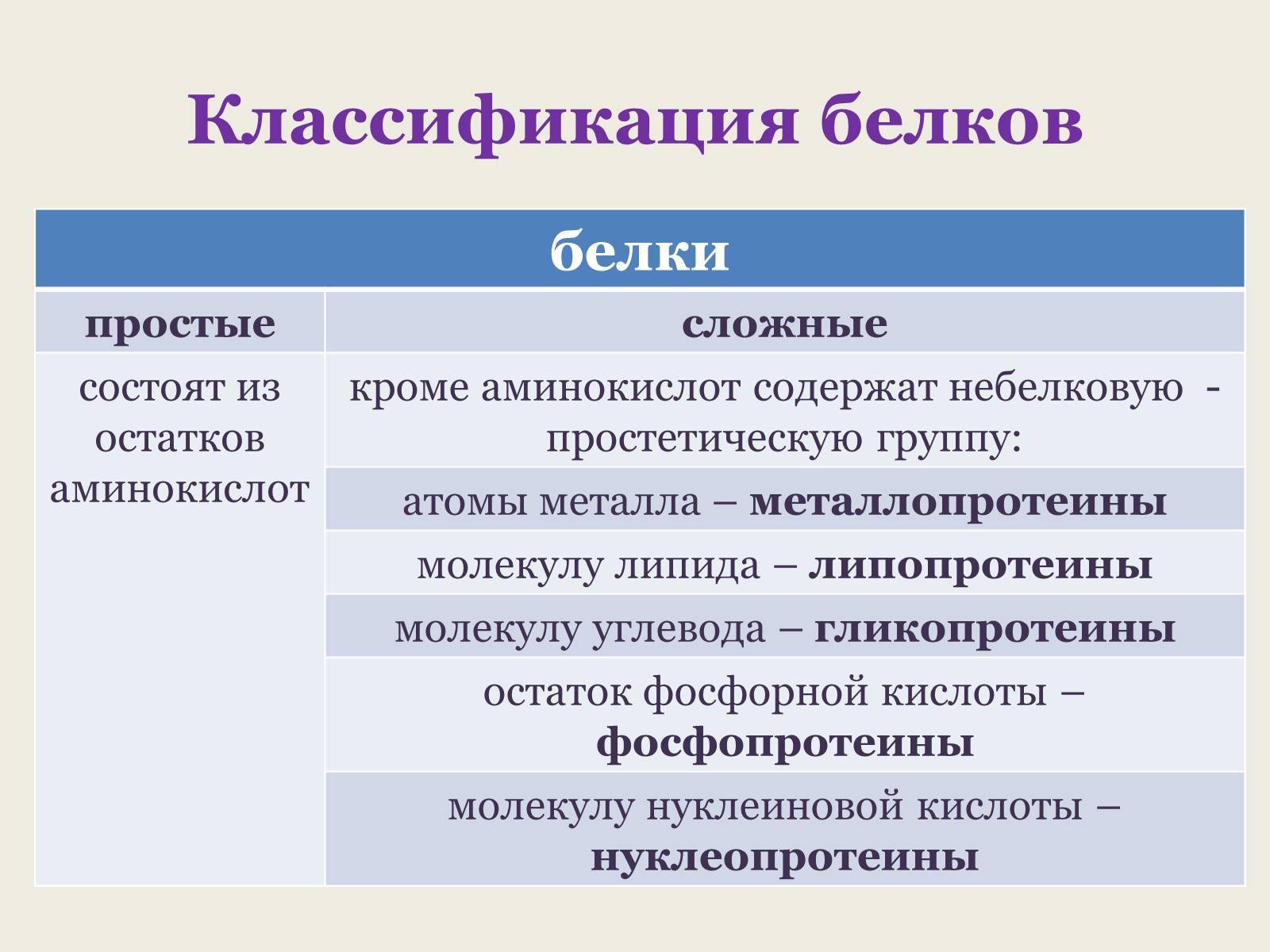 правильно классификация белков по биологическому значению выборе летнего термобелья