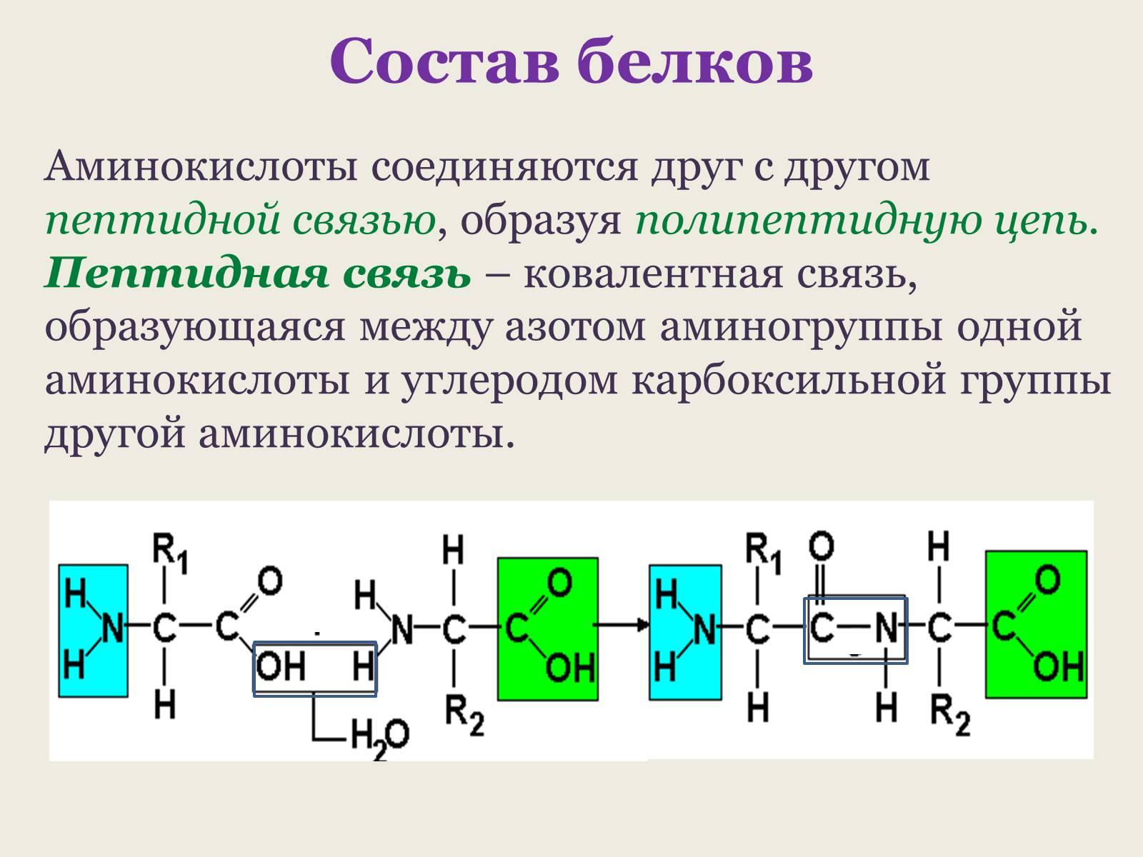 Составьте электронные схемы азота в азотной кислоте
