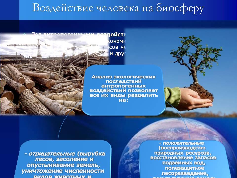 Экологические формы воздействия человека на биосферу